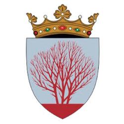 Consiliul Raional Sîngerei